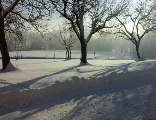 Der Winter hat richtig begonnen, wir starten auch wieder durch!